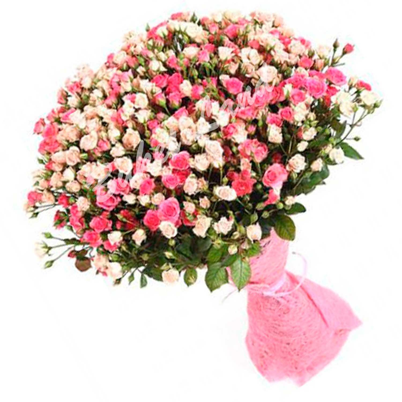 Хризантема букет фото 7