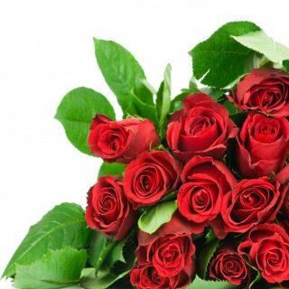 Розы и цветы штучно